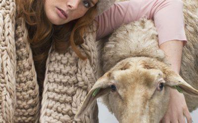 5 x wol, maar dan anders